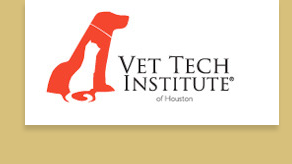 Vet Tech Institute